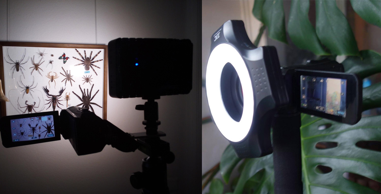 Filmen mit LED-Licht im Regenwald